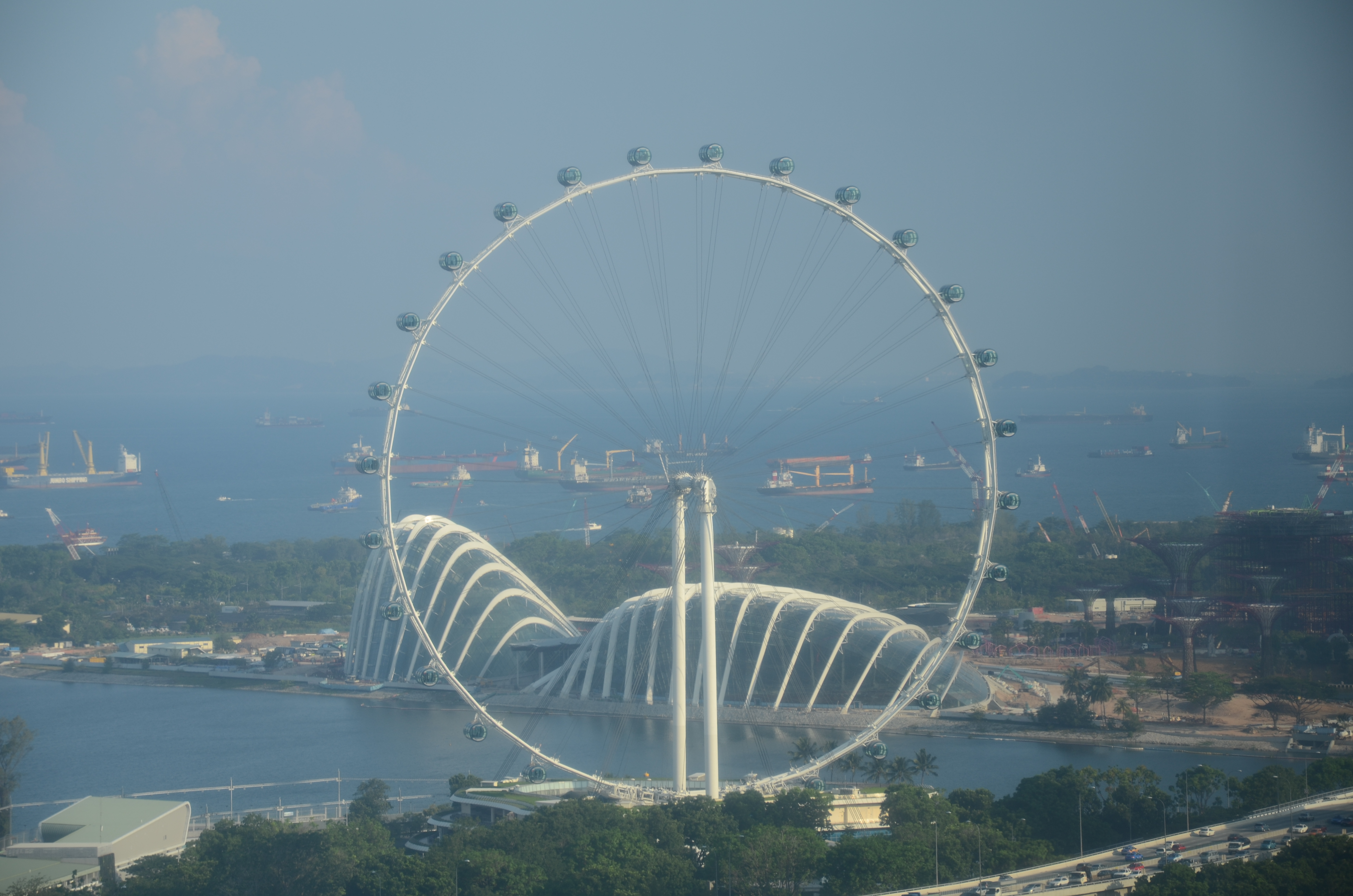 Singapore_Flyer_and_Gardens_by_the_Bay