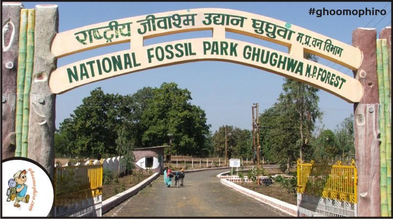 fossil-park