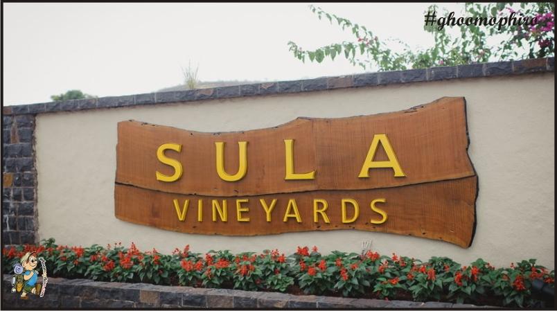 Sula-Vineyard