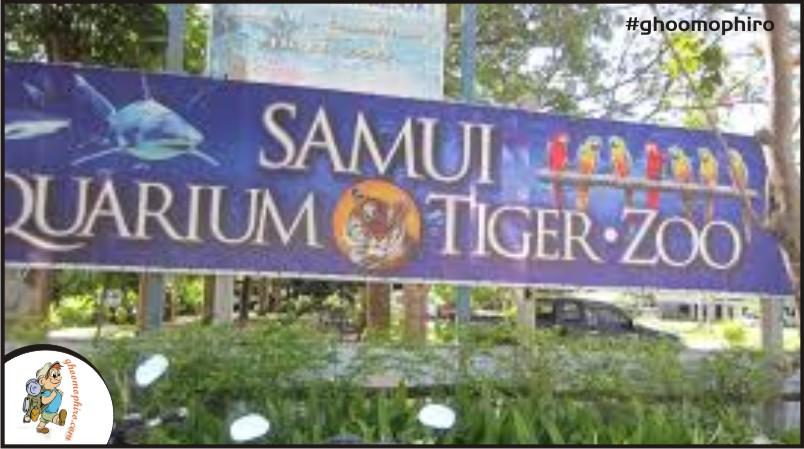 samui-1