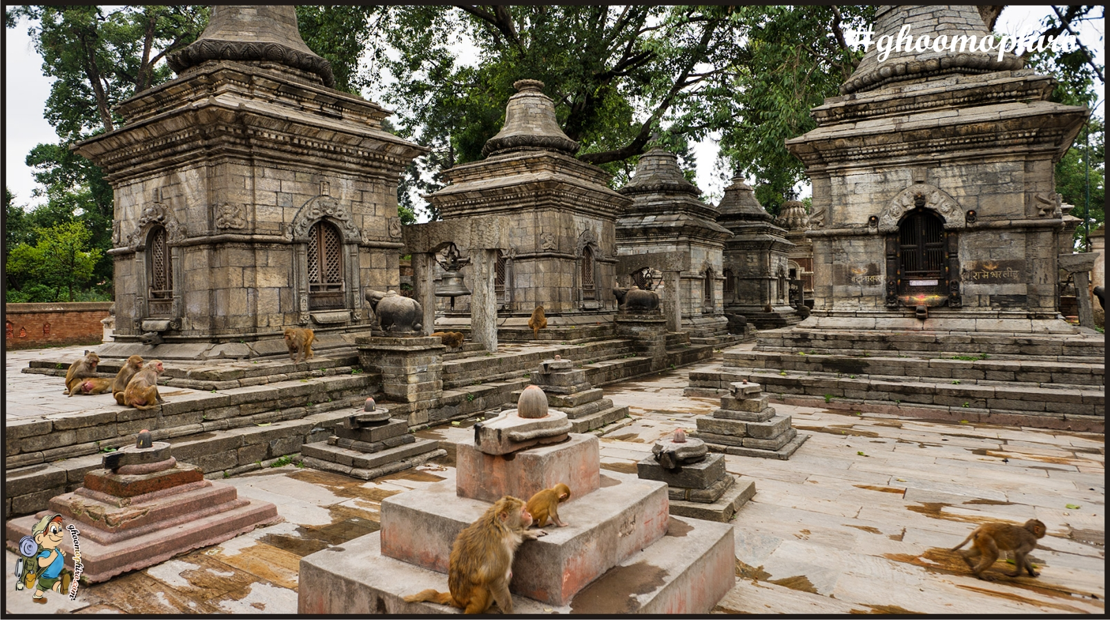 Nepal_Kathmandu_Pashupatinath_Pashupatinath_Temple_4