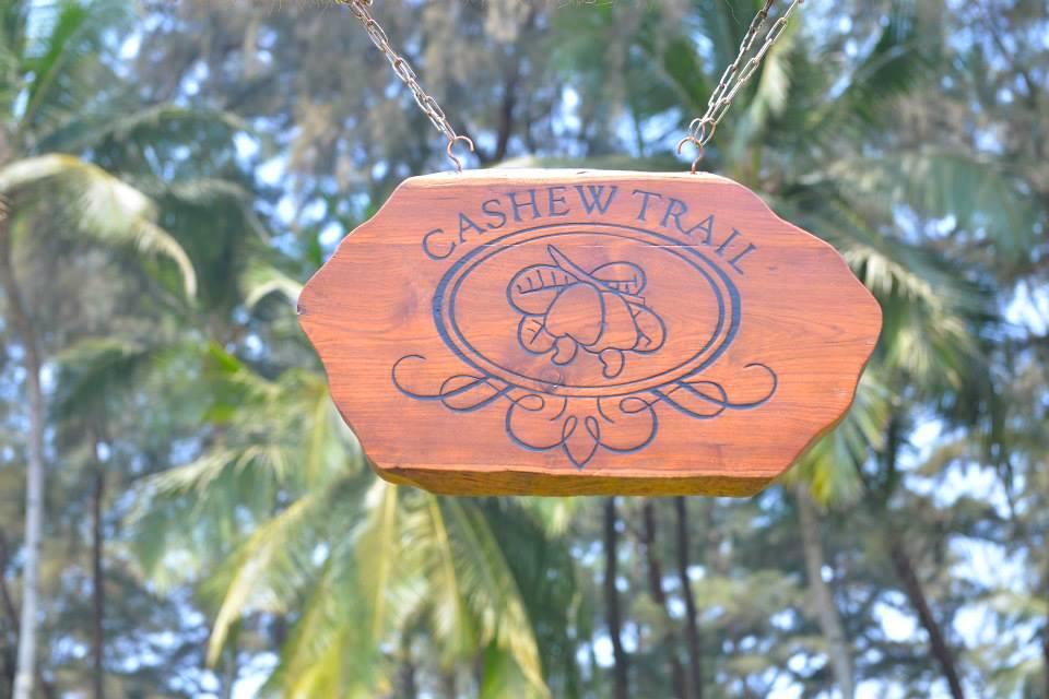 Cashew Trail in Goa