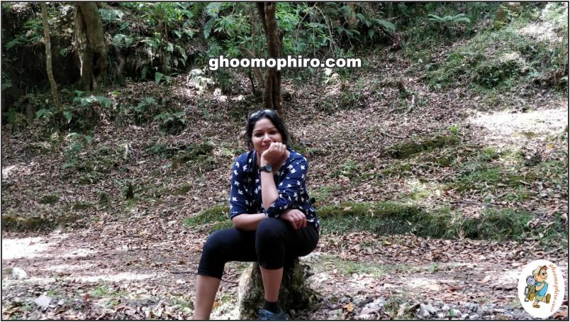 Top 5 things to do in Dehradun