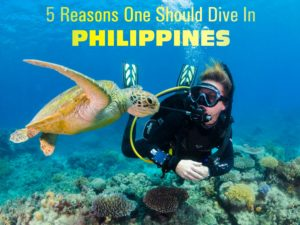 5 Reasons One Should Dive In Philippines